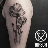 watercolor tattoo Eliseo Franchini