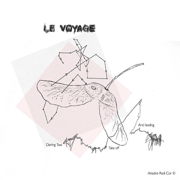 ari voyage