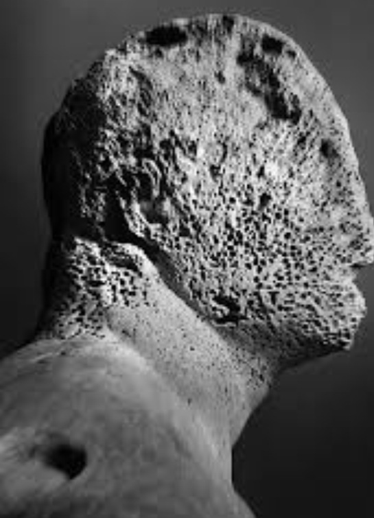 Mimmo Jodice, Il compagno di Ulisse